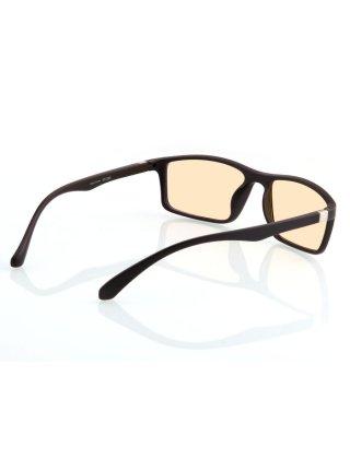 Очки для компьютера Visione VX-200